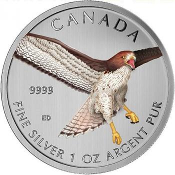 "Mobile Preview: Kanada 5 Dollar ""Rotschwanzbussard"" Red Tailed Hawk  2015 1Oz"
